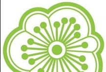 Us Green / by KMP Digitata