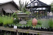 SOURCES-Garden & Exterior Design / Sources from product, craftsmen, designers, all sources relating to gardening, and exterior design