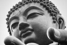 Buddha / by Kendall Rossiter
