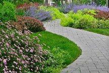 Polkuja / Paths / Polkuja puutarhassa.