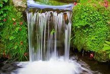 Vesi puutarhassa / Water in garden