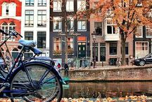 """amsterdam / """"i think of all the beauty still left around you and be happy"""" anne frank"""