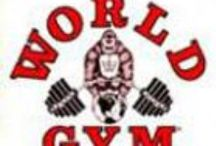 World Gym Training Clothes / World Gym clothing features their famous gorilla icon.  This screen-print appears on the mens tank top and World Gym shirt.  The same image is on the bodybuilding sweatshirt and workout short.  All World Gym clothes are shipped the same business day.