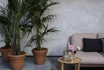 """Salone del Mobile 2017 """"Fritz Hotel"""" I Republic of Fritz Hansen / Republic of Fritz Hansen welcomes you to a magical place where the impassioned tropics meet the cool and minimalistic North as a celebration of the long lasting and close cooperation with the Spanish designer Jaime Hayon"""