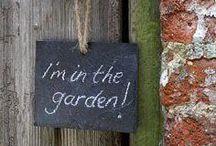 Mein Garten im Sommer... / by Julia