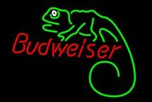 The Budwiser Lizzards / Awesome Lizards / by George Ballesteros