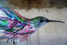 Observatorio de Colibries Birds Art
