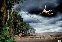 Ympäristöekologia: pilakuvia ja vitsejä