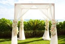 Nature Weddings / Outdoor weddings with nature as their backdrop