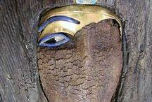 Archeologia - Egitto. / by Maribella Ugoletti