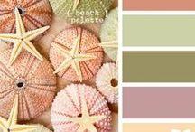 Colour Ideas