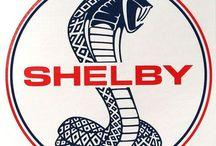 Motors : Shelby