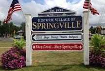 Springville Area Chamber of Commerce Blog Posts