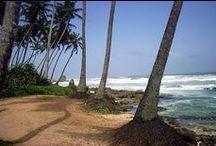 Sri Lankan Beauty / The Gorgeous country of Sri Lanka