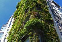 Patrick Blanc / Vertical Garden
