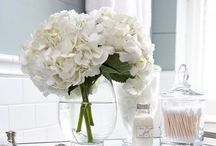 White floral bouquets by fresh Bloomers Flowers & Gifts...Orchids, lilies, roses / Classic White floral arrangements for all year long. White flower bouquets by Bloomers Flower shop.