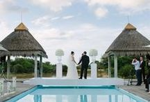 ABSOLUTE PERFECTION WEDDINGS AND EVENTS