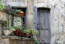 Provence adorable