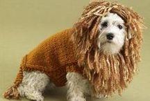 animal knit / animal knit