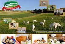 www.linea natura.org / allevatori  di capre saanen e camosciata e produttori di formaggi di capra