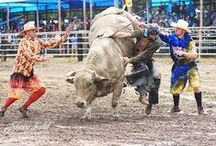 """Rodeo & PBR Clowns & Bull Fighters / After a recent incident involving a joke by a rodeo clown which was immediately snatched out of thin air and made into a huge spectacle I decided to start a board in honor of these people who are truly """"first responders"""" in the bull riding world. It is a sad state of affairs when we have reached a place where laughter has become obsolete. / by Barbara LeTourneau"""