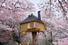 Tree House Inspirations / Nature inspired living