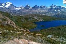 Italie - Massif du Grand Paradis / Les Alpes franco-italiennes restent privilégié pour flirter entre forêts et neiges éternelles dans le Parc national du Grand Paradis, le long d'imposants glaciers
