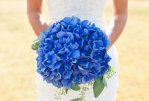 Wedding Flowers / Every flower that is necessary in a beautiful wedding. bouquets. centerpieces. decorations. etc.