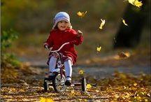 Fall / by Ruby