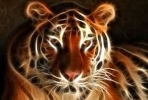 Art-Animals