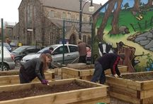 Garden of Eatin' Donegall pass Community Garden / Community garden and the volunteers