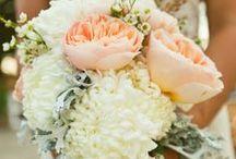 wedding ideas. / by Catherine Miller