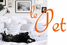 Pets / by Sandra Oster Interiors