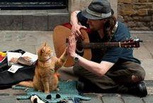 La vita è più bella in compagnia... / Gli amici... un tesoro sempre più raro da trovare!  Per chi ha la fortuna di godere di tale ricchezza... angoli deliziosi dove trascorrere le nostre giornate in compagnia.