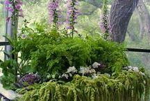 garden decor - dekoracje ogrodowe