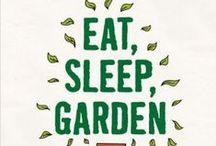 garden - ogród