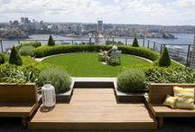 rooftop garden - ogród na dachu