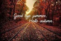 autumn - jesień