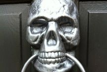 Skull / Every kind of skull for everything