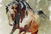 ANIMALARTE / Los animales son bellas creaturas, obra de arte de Dios / by Barbara Roble