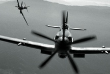 flying / by Jed Webb
