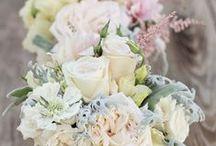 In Full Bloom...