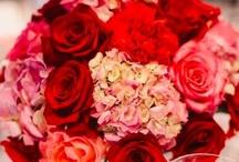 Valentine's Day ❤ / ❤❤