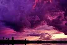 Purple is my Favorite Color ❤