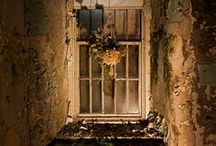 Abandoned Beauty / by Sukie Alexander