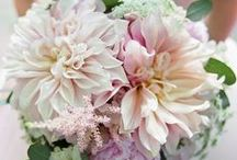 Bridal Bouquets / Bridal bouquets of all colors