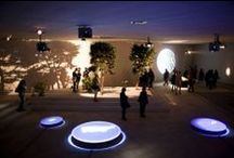 Venice Biennale 2013 - Art / Scandinavian and Northern Europe artists exhibition for the 55° Venice Biennale of Art.