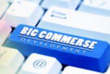 Bigcommerce Development Services / Bigcommerce Development Services