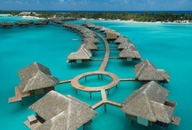I want to go there!