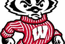 Badgers, Jump Around! / All things Wisconsin.